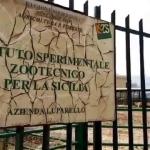 Istituto Zootecnico di Palermo storia siciliana di uccellacci e uccellini.
