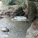 Inquinamento: Depuratore di Giardini Naxos, tra presunti sversamenti e filtri danneggiati