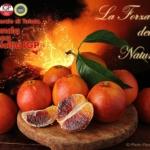 Consorzio di Tutela Arancia Rossa di Sicilia IGP sarà presente a Identità Golose di Milano