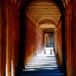 Bologna, esercenti contro abusivi in centro
