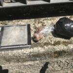 Droga a Bergamo, arresta una donna per detenzione ai fini di spaccio di cocaina ed eroina