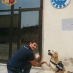 """Addio a Mexy: la labrador poliziotta lascia il suo """"partner"""" dopo una vita insieme"""